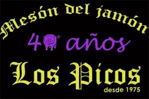 Mesón Los Picos